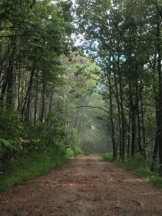 AT Drive Path