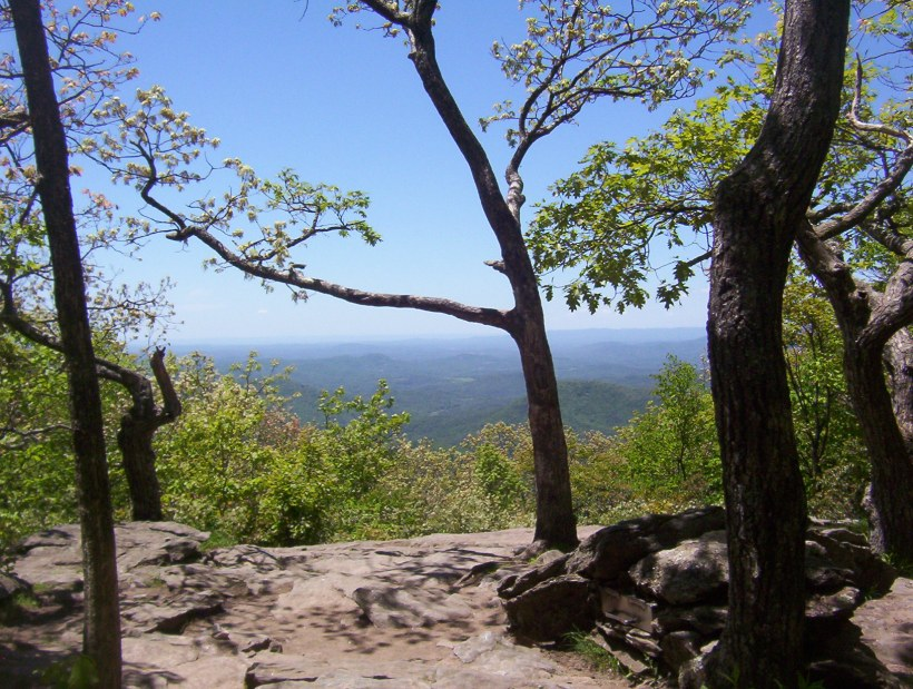 AT Springer Mountain Summit