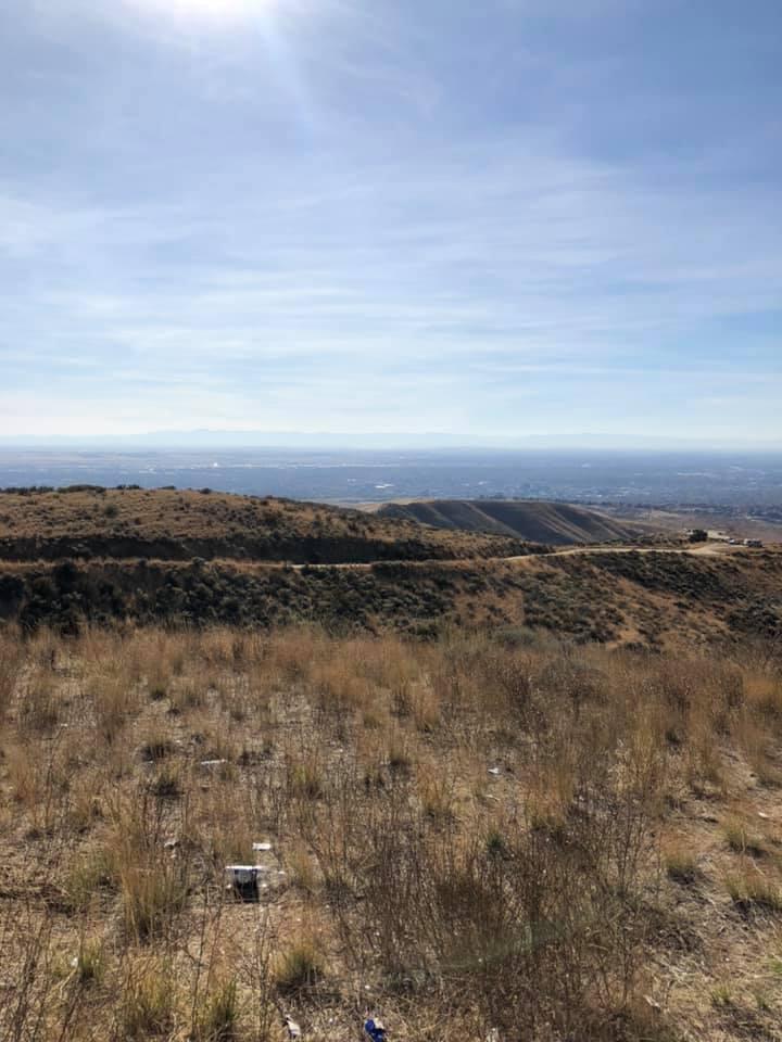 Boise Landscape