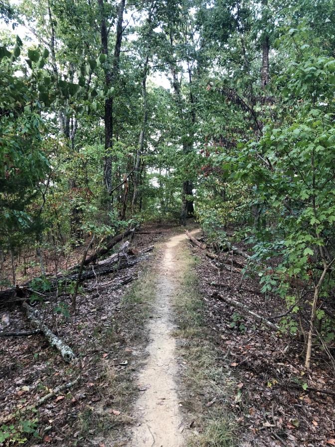 JMF Trail