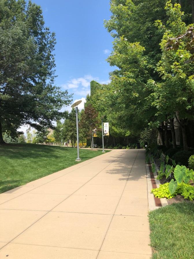 NKU Campus Green